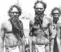 aboriginal community from the gumbaynggirr tribe essay The federal court has approved a 17-year-old native title claim by the  gumbaynggirr people on the new south wales  gumbaynggirr dancers with  justice jayne jagot  topics: native-title, community-and-society,.